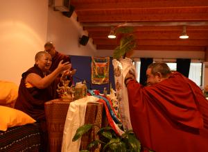 Fernando obrece una planta a Rinpoché
